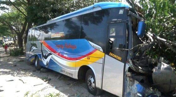Sopir Ugal-ugalan, Bus Sugeng Rahayu Tabrak Bus Mira dan Motor di Ngawi