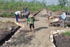 Jalan Usaha Tani Desa Jimbar Wonogiri Dibangun, Petani Tak Lagi Capek Angkut Panen Sejauh 2 Kilometer