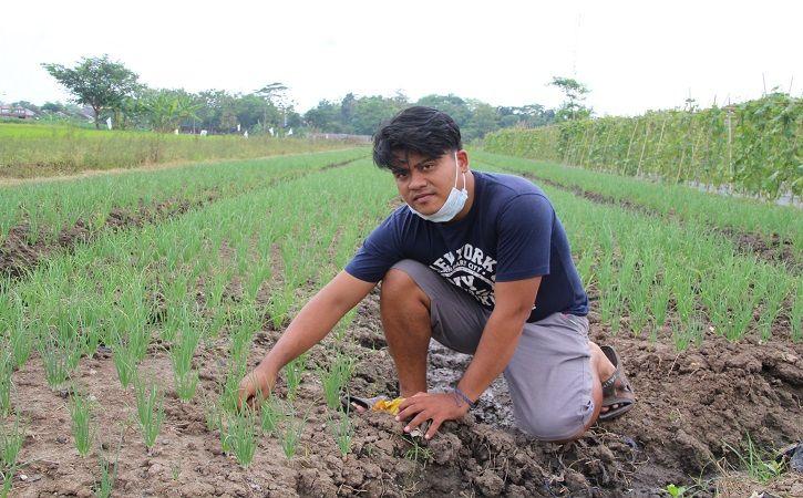Galih Andika Saputra, 28, petani milenial asal Desa Ngemplak, Kecamatan Kalikotes di lahan pertanian yang dia kelola, Selasa (14/9/2021). (Solopos/Taufiq Sidik Prakoso)