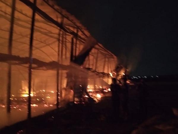 Kandang ayam milik Suparno, 59, warga Desa Medani, Kecamatan Tegowanu, Kabupaten Grobogan ludes terbakar, Rabu (22/9/2021). Kerugian akibat kejadian ini Rp500 juta. (Istimewa)