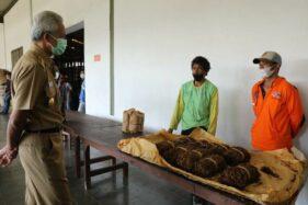 Petani Tembakau di Jateng Galau, Panen Raya Tapi Serapan Rendah