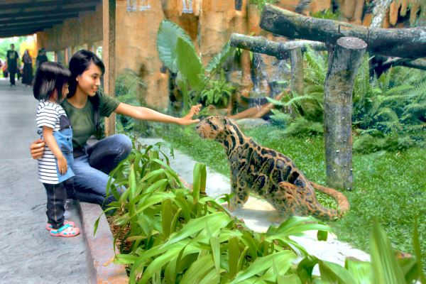 Gembira Loka Zoo di Kota Jogja. (harianjogja.com/istimewa)
