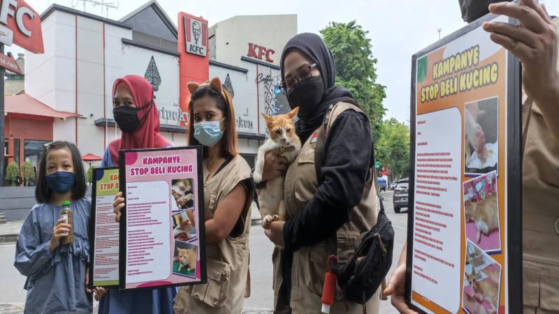 Pegiat Rumah Difabel Meong (Rudimeong) bersama warga mengampanyekan gerakan adopsi kucing jalanan di perempatan Ngarsapura, kawasan Jl Slamet Riyadi, Solo, Minggu (26/9/2021). (Solopos/Chrisna Chanis Cara)