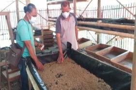 Kelola Sampah Organik dengan Maggot, Omah Limbah Gempol Klaten Wakili Jateng ke Tingkat Nasional