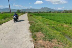 Petani Pengguna Irigasi Colo Barat Siapkan Dana untuk Sedot Air