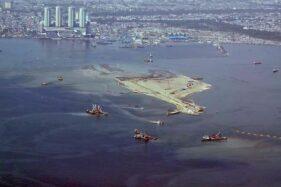 Polutan Parasetamol di Air Laut Berdampak Buruk bagi Kerang Betina