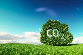 Profesi Akuntansi Mendukung Pencapaian Target Net-Zero Emissions