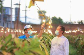 Electrifying Agriculture Bikin Petani Bisa Raup Untung 3 Kali Lipat