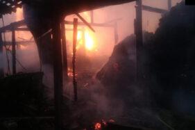 Begini Kondisi 16 Ekor Sapi dalam Kebakaran di Kladungan Sragen