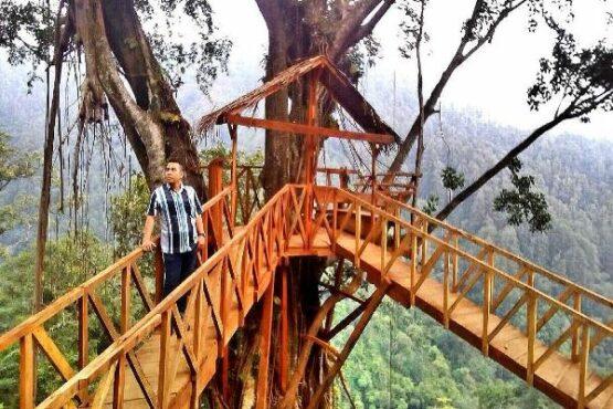 Pesona Wisata Rumah Pohon Hits di Brebes