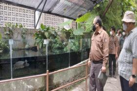 Banyak Pengunjung di Bawah 12 Tahun Ditolak, GL Zoo Minta Dispensasi