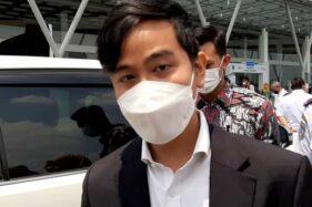 Soal Banteng Vs Celeng, Gibran: Statemen Pak Rudy Sangat Menyejukkan!